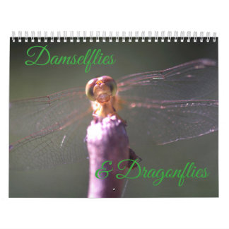 Damselflies-und Libellen-Kalender Kalender
