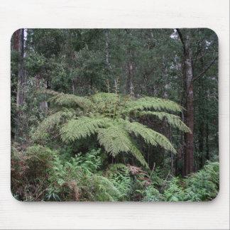 Dandenong erstreckt sich Regenwald, Victoria, Mousepad