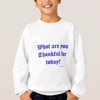 dankbar sweatshirt