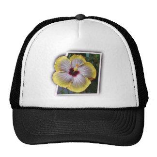 Danke aloha mahalo Entwürfe Kappe