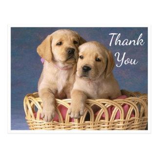 Danke gelbe Labrador retriever-Hündchen Postkarte