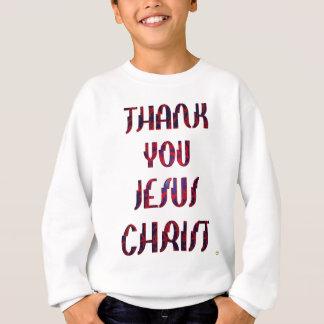 Danke JESUS Sweatshirt