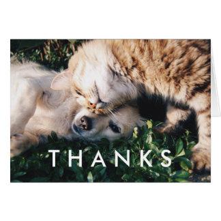 Danke, mit Katze und Hund zu kardieren Karte