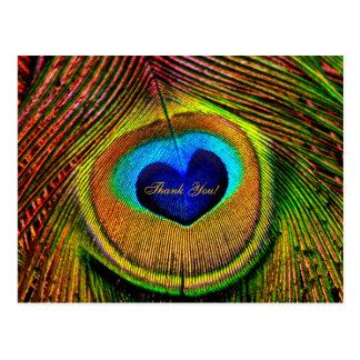 Danke Pfau-Feder-Auge der Liebe Postkarte