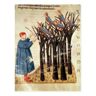 Dante und die Soule umgewandelt in Vögel Postkarte