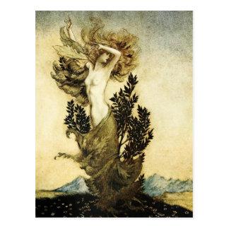 Daphnes Metamorphose in einen Baum Postkarte
