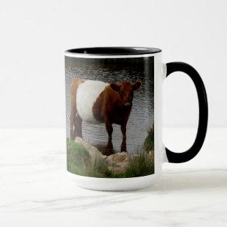 Dartmoor schnallte Galloway-Kuh um, die im Fluss Tasse