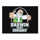 Darwin ist mein Homeboy (farbenreich) Postkarten