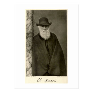 Darwin stehend nahe bei einer Säule, Postkarte