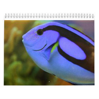 Das Aquarium Wandkalender