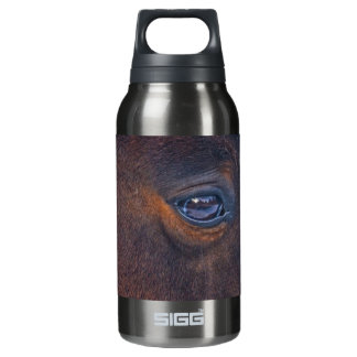 Das Augen-pferdeartiges Foto des schönes Pferds Isolierte Flasche