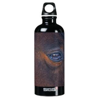 Das Augen-pferdeartiges Foto des schönes Pferds Wasserflasche