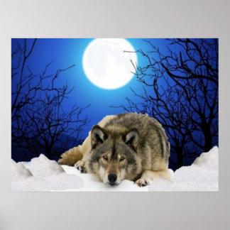 Das Beobachterwolf Plakat