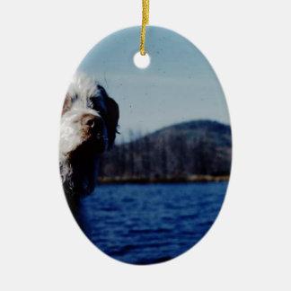 "Das berühmte ""nervtötende"" von Kellum Teich Ovales Keramik Ornament"