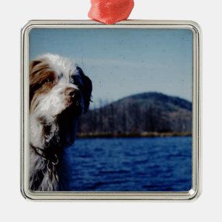 """Das berühmte """"nervtötende"""" von Kellum Teich Quadratisches Silberfarbenes Ornament"""