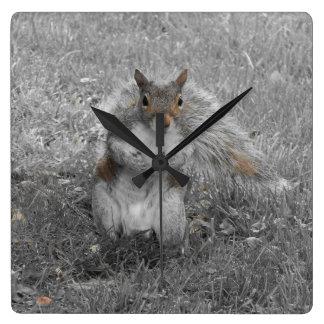 Das Eichhörnchen tat es Quadratische Wanduhr
