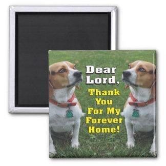 Das Gebet des Beagles Quadratischer Magnet