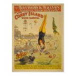 Das große Coney Island-Wasser-Karnevals-Plakat Postkarten