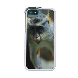 Das Guenon des Wolfs Affe Hülle Für iPhone 5