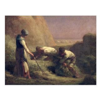 Das Heu Trussers, 1850-51 Postkarten