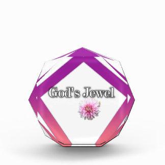 Das Juwel des Gottes Auszeichnung