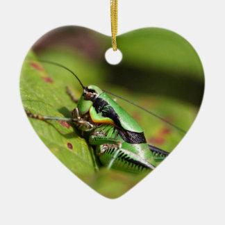 Das katydid Kricket Eupholidoptera chabrieri Keramik Herz-Ornament
