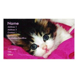 Das Kätzchen-Geschäfts-Karte der Welt niedlichste Visitenkartenvorlage