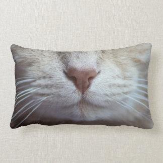 Das Kissen der Katze, Humor