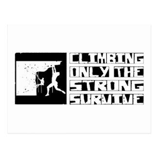 Das Klettern überleben Postkarte