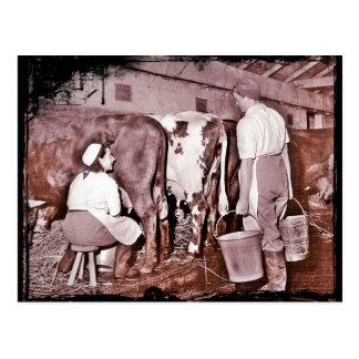 Das Land-Armee MOLKEREI WWII der Frauen Postkarten