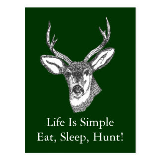 Das Leben ist essen, schlafen, jagen einfach! Postkarte