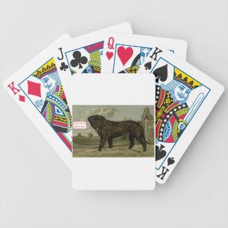 Das Leben ist mit einem Hund besser Bicycle Spielkarten