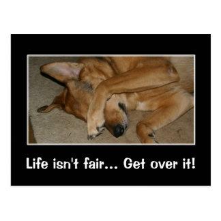 Das Leben ist zu niemandem Sie große Heulsuse Postkarte