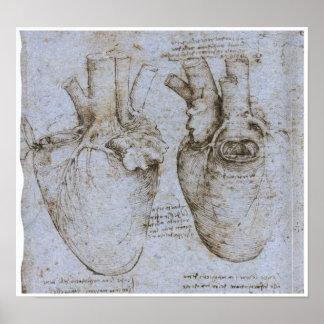 Das menschliche Herz, Leonardo da Vinci Poster