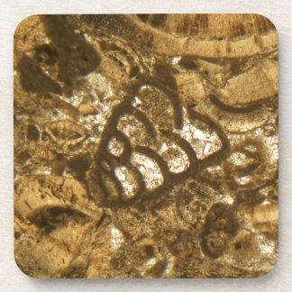 Das Miozän betreffender Kalkstein unter dem Getränkeuntersetzer