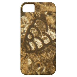 Das Miozän betreffender Kalkstein unter dem Hülle Fürs iPhone 5