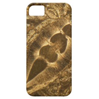 Das Miozän betreffender Kalkstein unter dem iPhone 5 Hülle