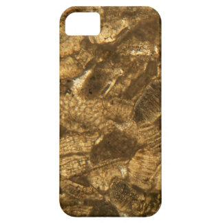 Das Miozän betreffender Kalkstein unter dem iPhone 5 Schutzhülle