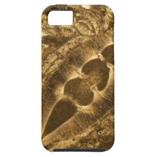Das Miozän betreffender Kalkstein unter dem iPhone 5 Schutzhüllen