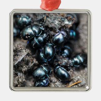 Das Mistkäfer Anoplotrupes stercorosus Quadratisches Silberfarbenes Ornament