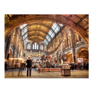 Das Naturgeschichte-Museum, London Postkarte