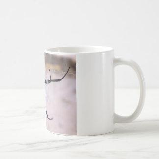 Das Netz der Witwe Kaffeetasse
