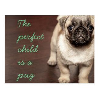 Das perfekte Kind ist ein Mops Postkarte