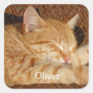 Das personalisierte Foto des Haustieres Quadratischer Aufkleber