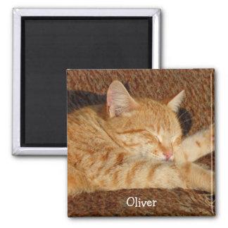 Das personalisierte Foto des Haustieres Quadratischer Magnet