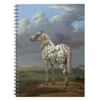 Das piebald-Pferd Notizblock
