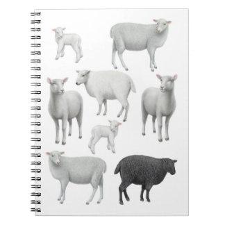 Das schwarze Schaf-Notizbuch Notizblock