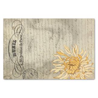 Das Seidenpapier Damen-Decoupage