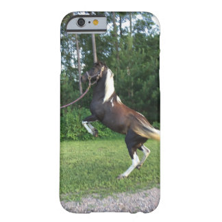 Das Trick-Pony Barely There iPhone 6 Hülle