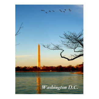 Das Washington-Monument Postkarte